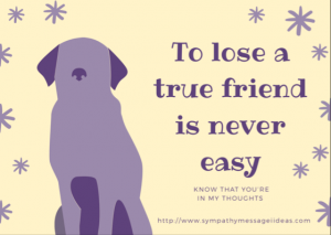 Dog Pet Loss Message