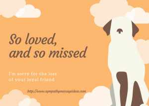 Pet Loss Message