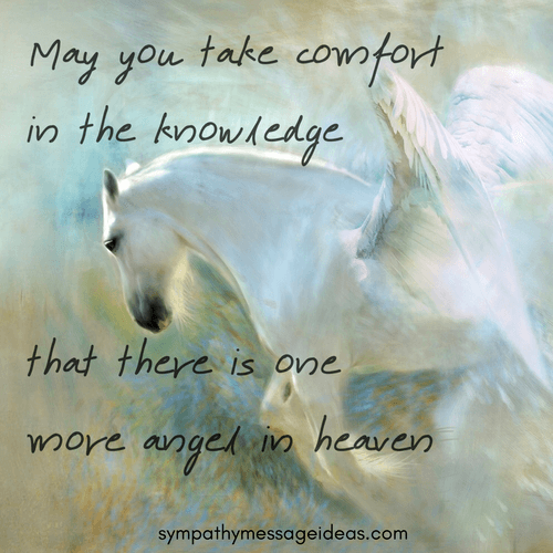 Angel Sympathy Quote