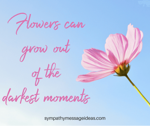 Flowers Sympathy Quote