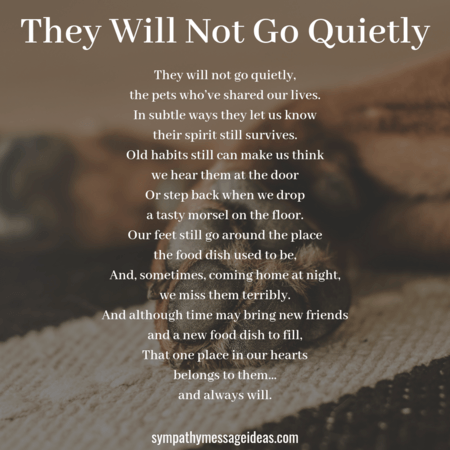 24 Touching Pet Loss Poems to Find Comfort In - Sympathy