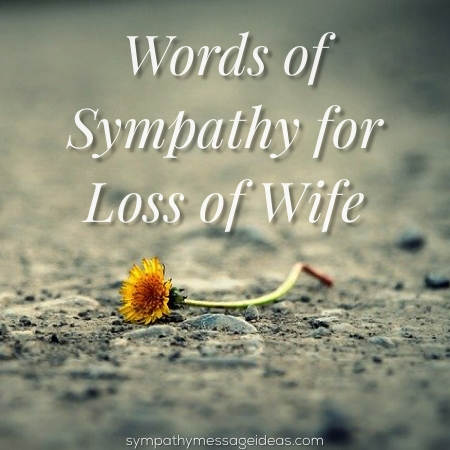 Word of sympathy for loss of wife