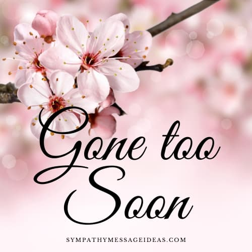 gone too soon quote