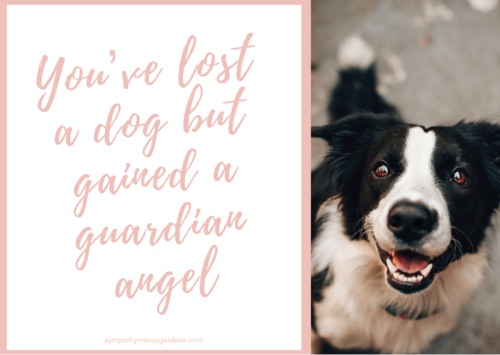 guardian angel loss of dog quote