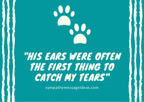 heartbreaking dog loss quote