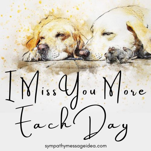 I miss you dog passed away quote