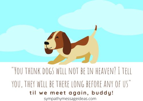 in heaven dog passing away quote