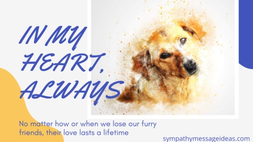 in my heart always dog grief quote