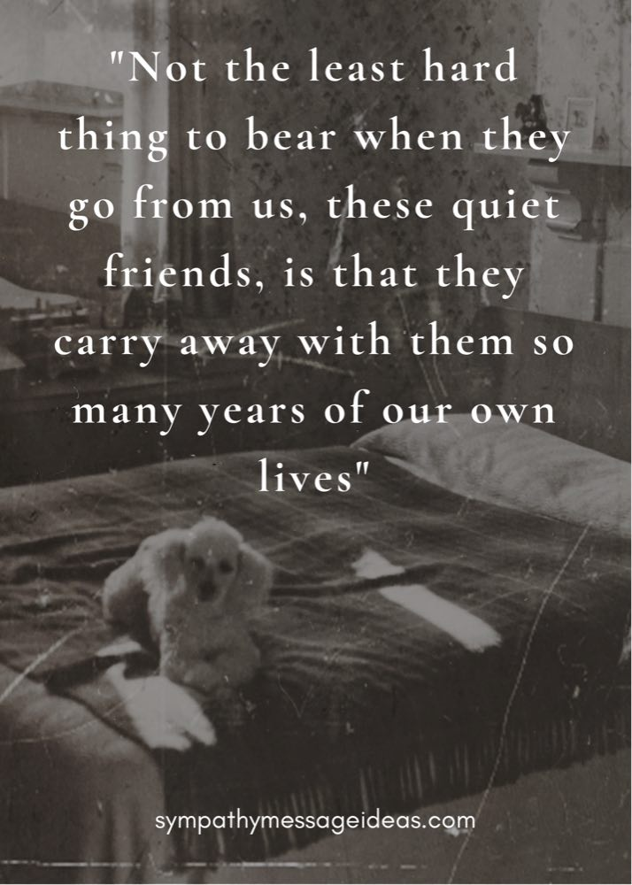 years of our lives dog passing quote