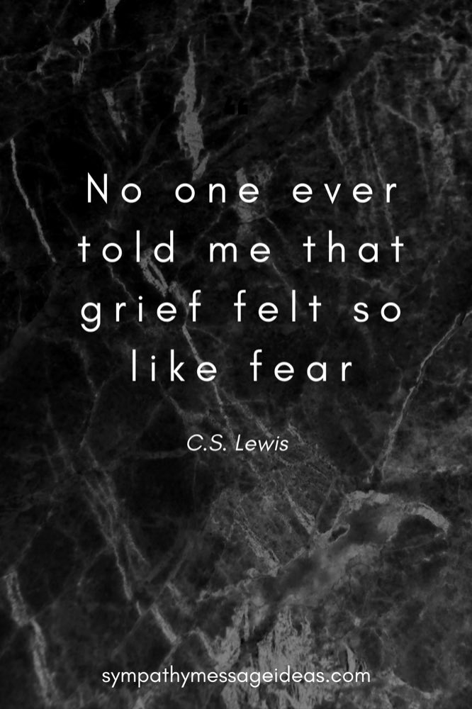 no one ever told me that grief felt so like fear cs Lewis quote