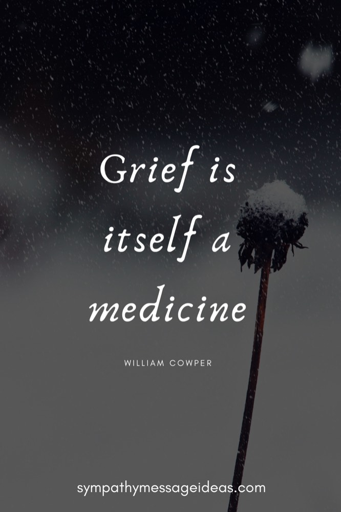 grief itself is a medicine quote