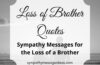 loss of brother quotes and sympathy messages