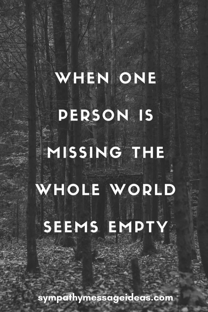 when one person is missing the whole world seems empty grief quote
