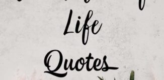 celebration of life quotes