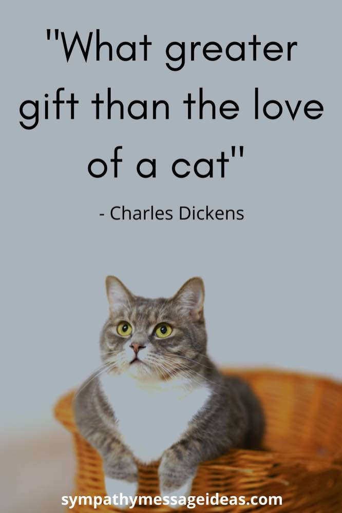 what greater gift than the love of a cat quote