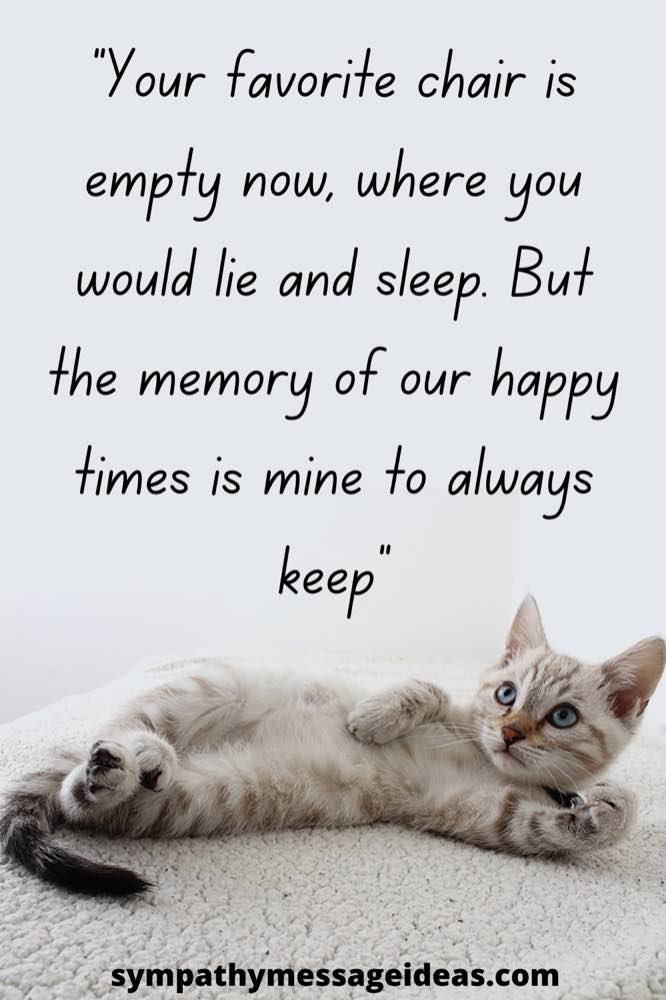 memory of happy time cat death quote