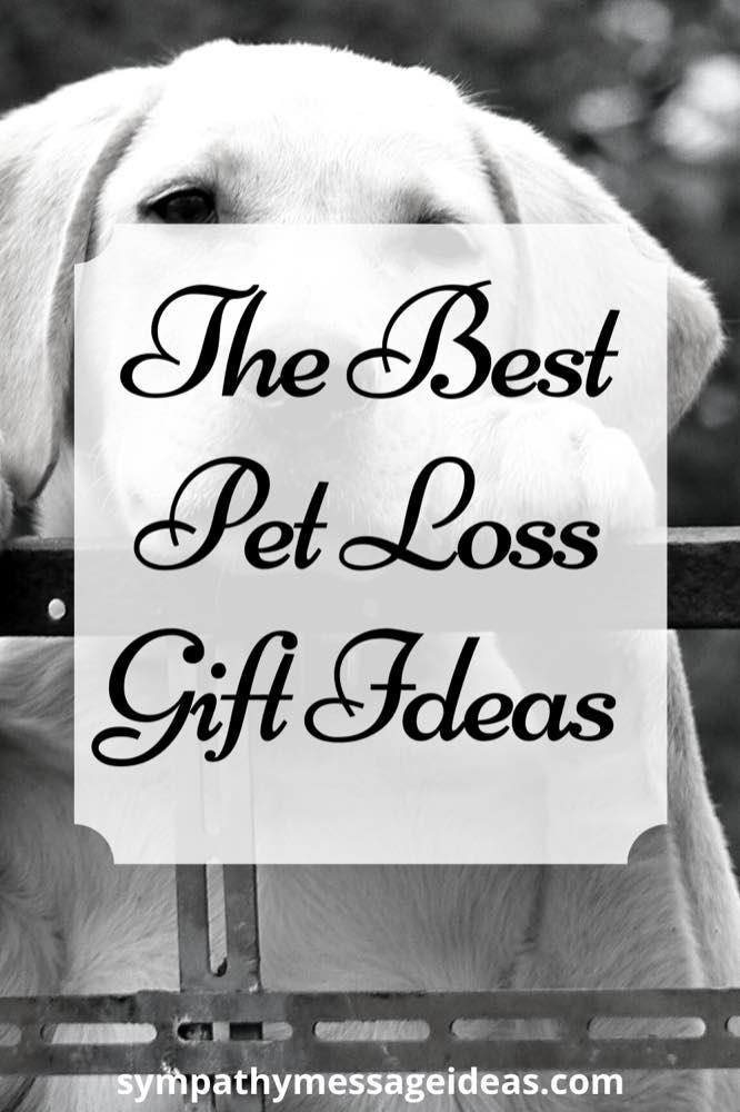 pet loss gift ideas