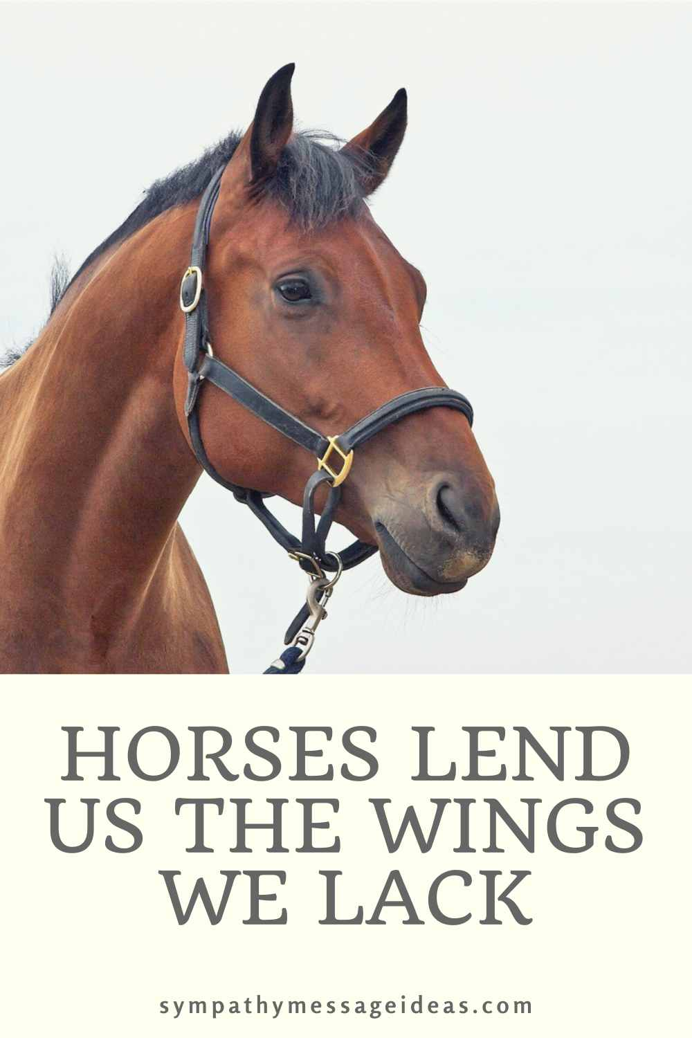 horses lend us wings quote