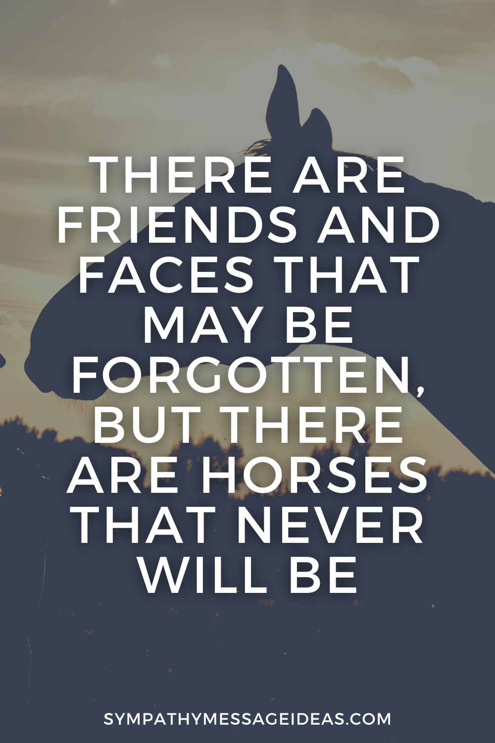horse will never be forgotten quote