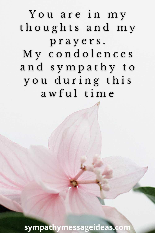 loss of niece sympathy message