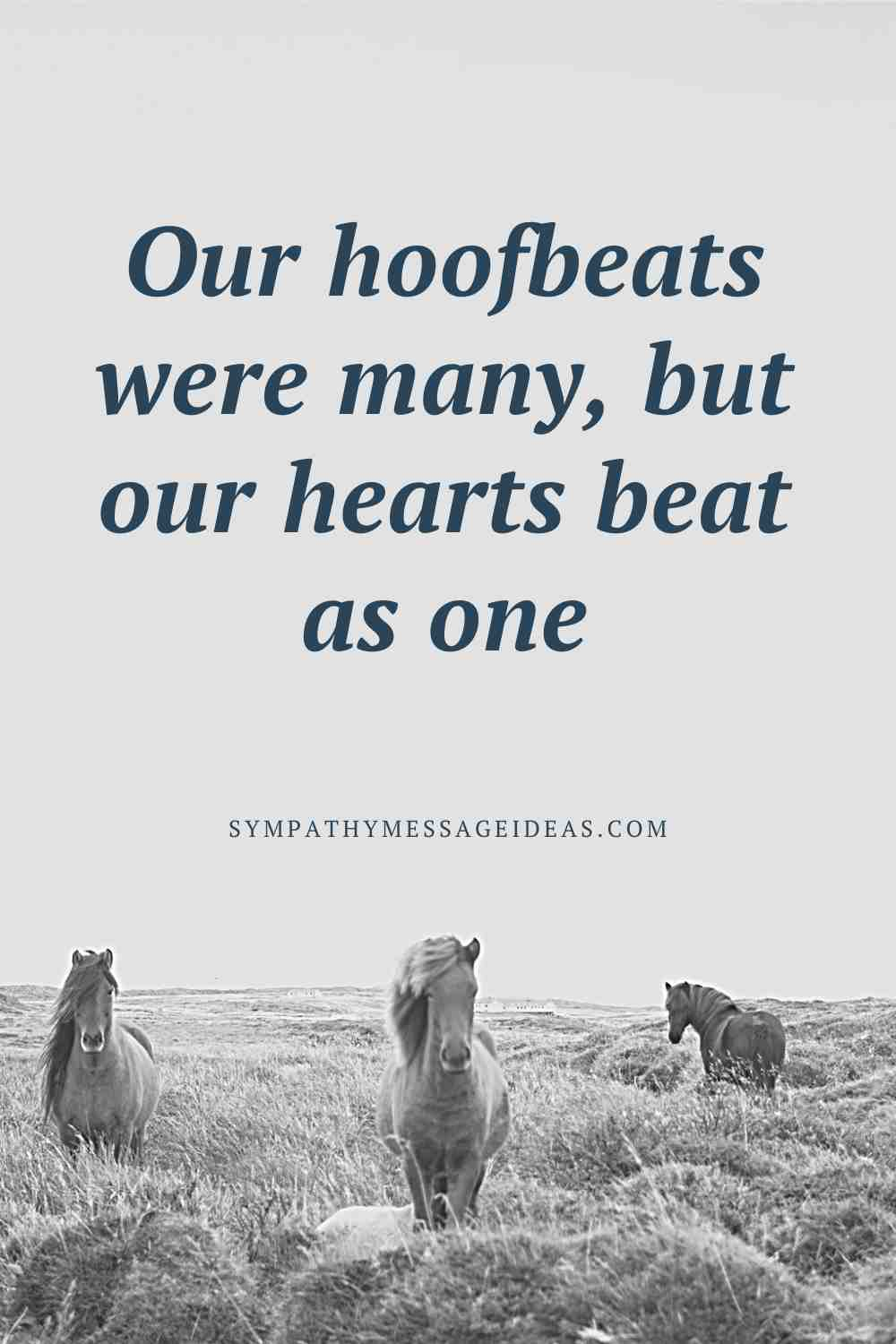 our hearts beat as one horse sympathy quote