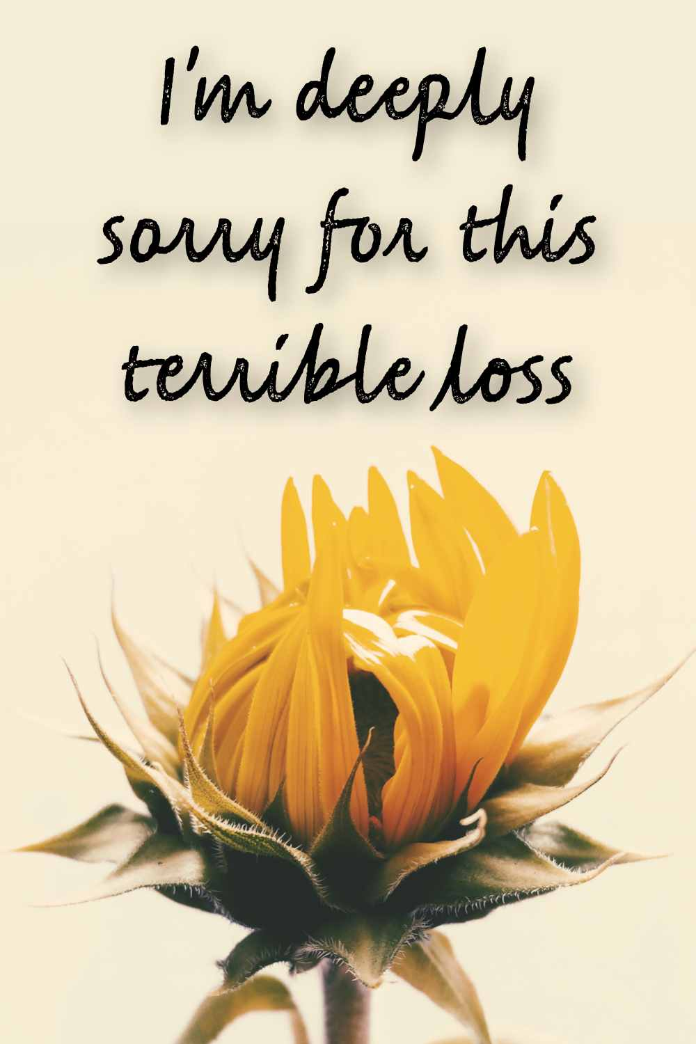 I am deeply sorry for your terrible loss quote
