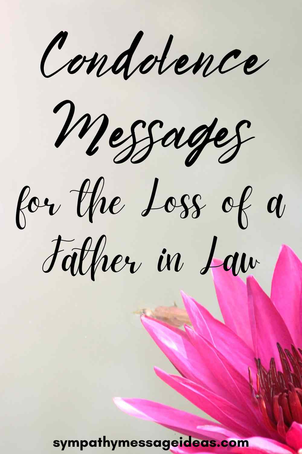 condolence messages for loss of father in law pinterest