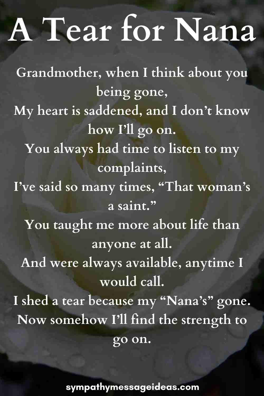 a year for nana memorial poem